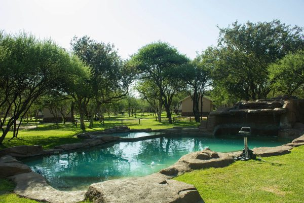 Thabaledi Game Lodge Camp Site Pool